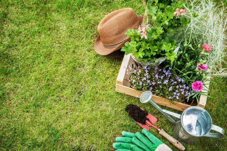 Entretenir son jardin avec des produits naturels
